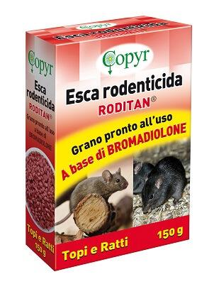 RODITAN GRANO 2538285