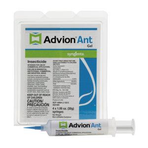 Advion-Gel-Formiche