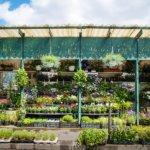 Emergenza Coronavirus: i Garden possono riaprire!