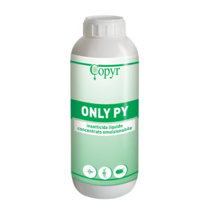ONLY PY LT. 1 | Copyr