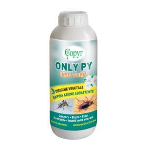 ONLY PY LT. 1 H&G | Copyr